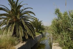 acequia Guardamar